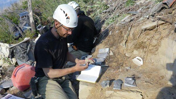 Один из авторов статьи изучает содержимое пород Мраморного каньона