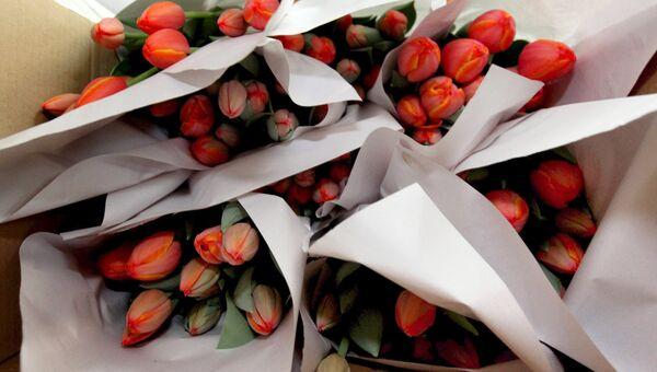 Букеты тюльпанов в теплице, архивное фото