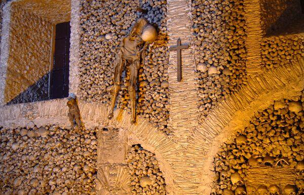 Запасные скелеты