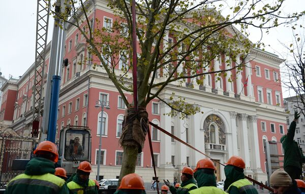 Высадка липовой аллеи на Тверской улице