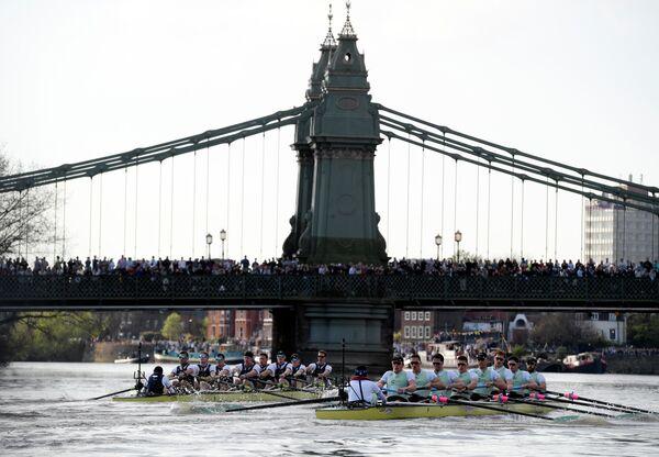 Команды Оксфорда и Кембриджа в традиционной гребной гонке на Темзе