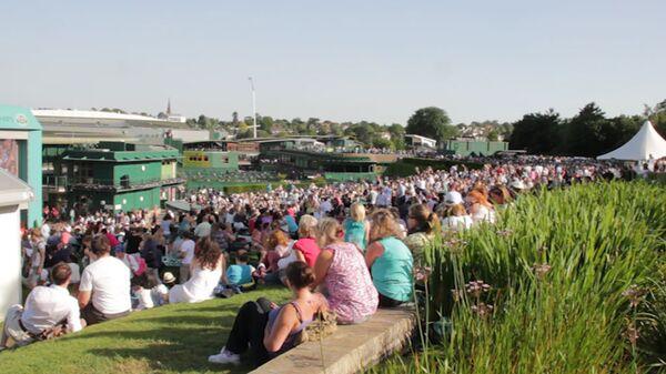 Крюшон, клубника и отдых на траве - как болельщики наслаждаются Уимблдоном