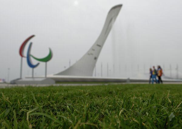 Газон в Олимпийском парке в Сочи