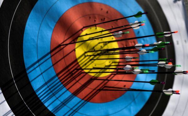 Мишень со стрелами во время соревнований по стрельбе из лука на I Европейских играх в Баку