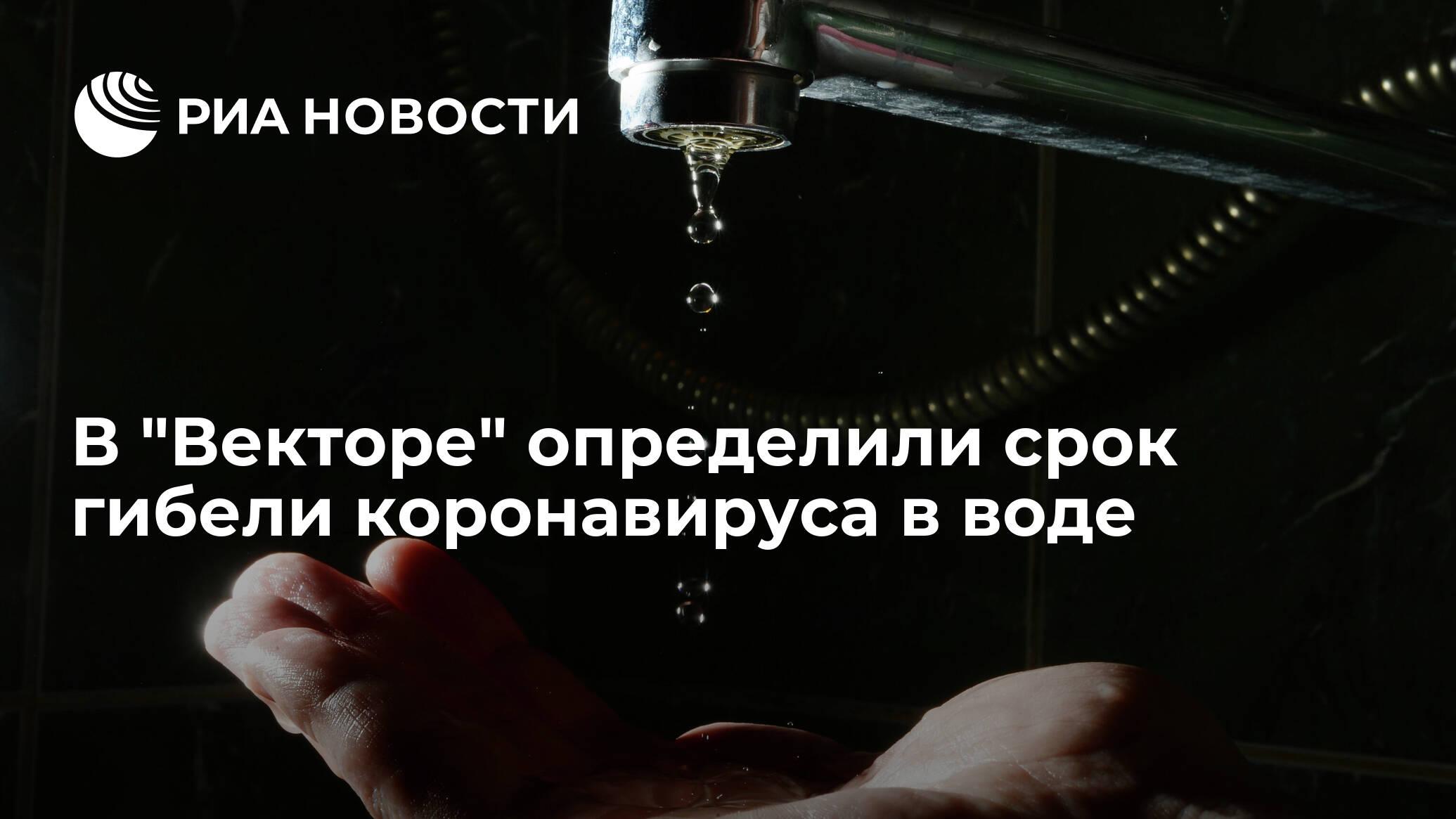 Определен срок, за который коронавирус погибает в воде